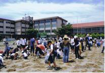 下府中小学校校庭の芝生化活動