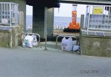 海岸清掃後に置かれたゴミ袋